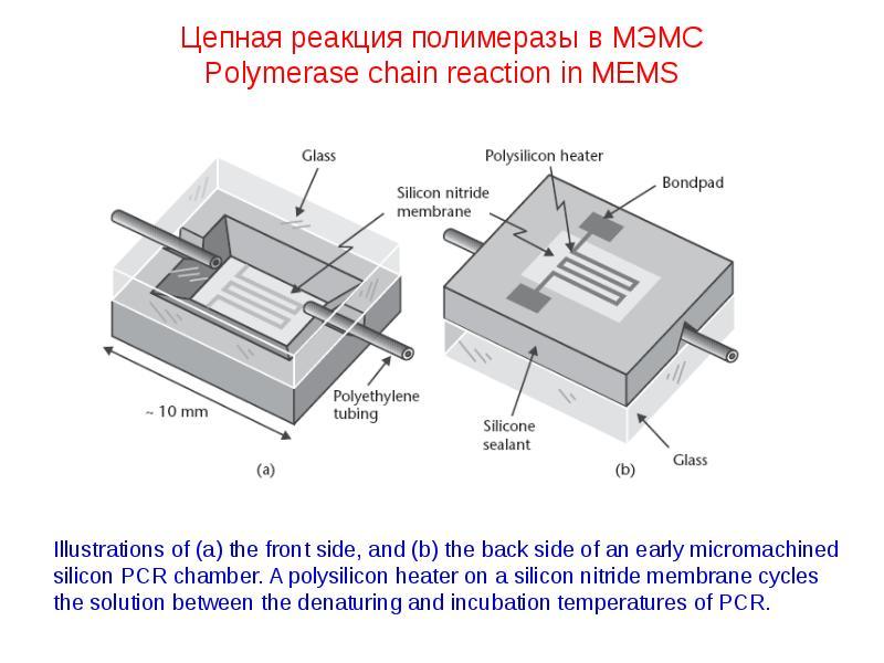 Цепная реакция полимеразы в МЭМС Polymerase chain reaction in MEMS