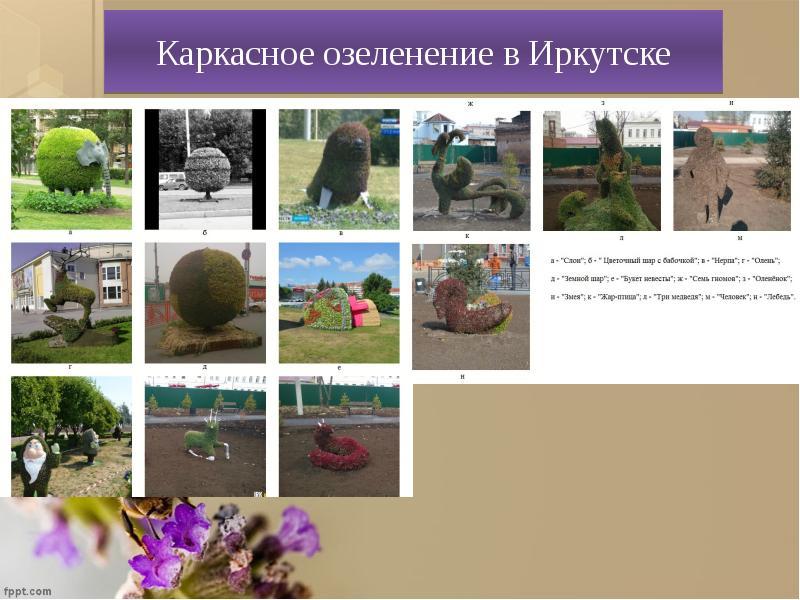 Каркасное озеленение в Иркутске