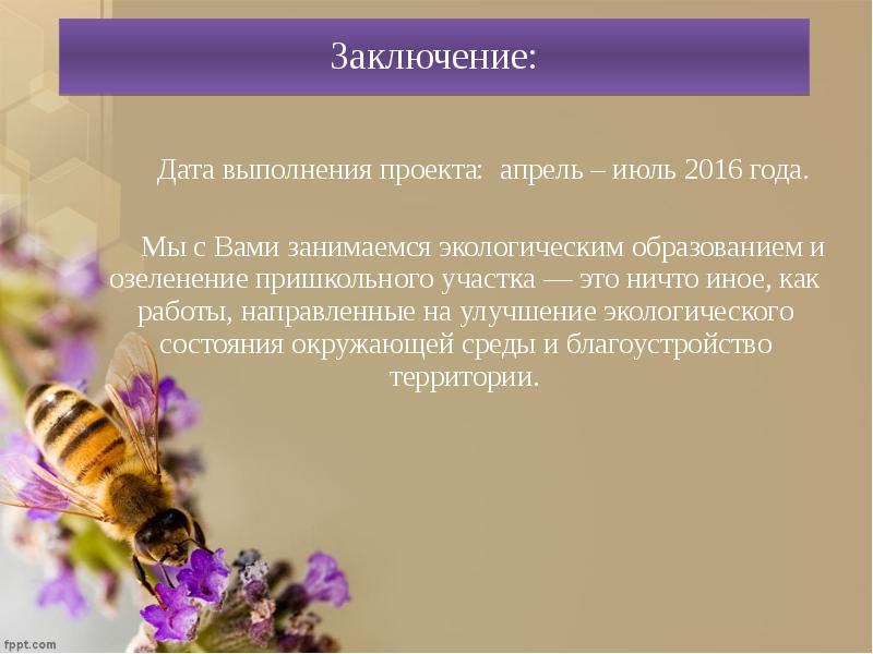 Заключение: Дата выполнения проекта: апрель – июль 2016 года. Мы с Вами занимаемся экологическим обр