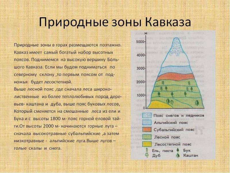 Природные зоны Кавквза