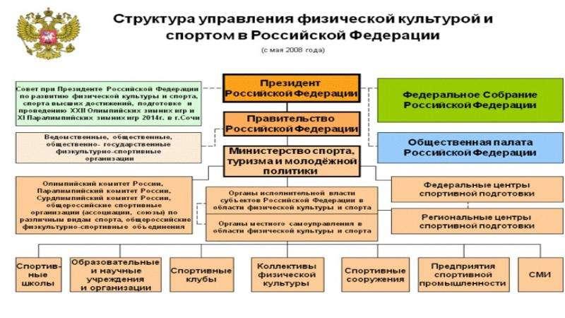 Министерство спорта Российской Федерации, слайд 5