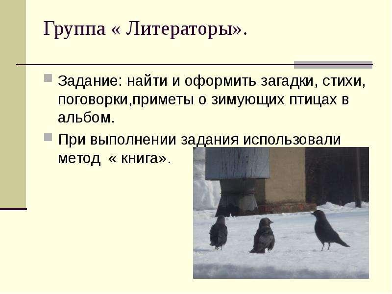 Группа « Литераторы». Задание: найти и оформить загадки, стихи, поговорки,приметы о зимующих птицах