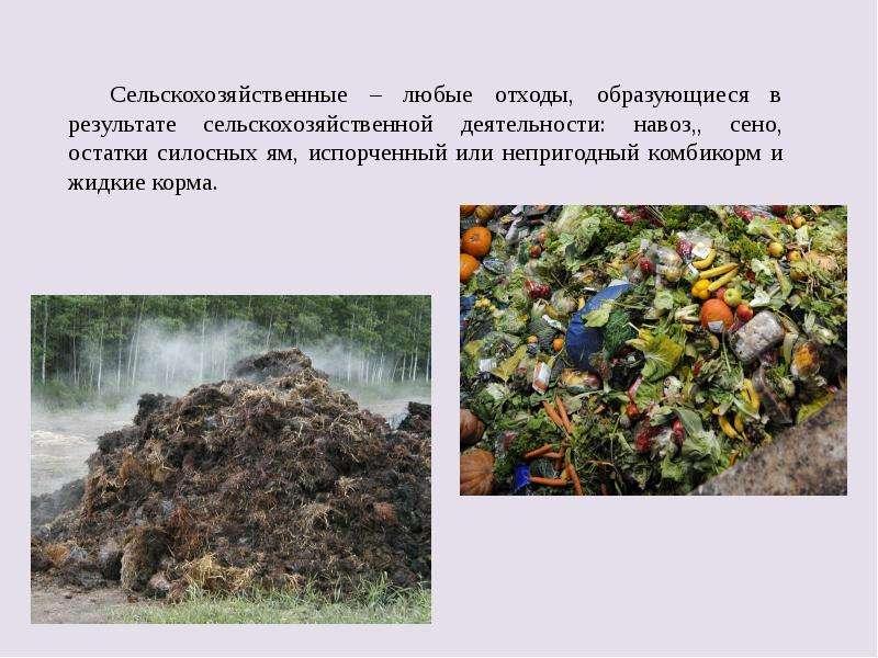 Сельскохозяйственные – любые отходы, образующиеся в результате сельскохозяйственной деятельности: на