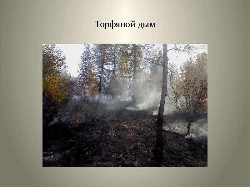 Торфяной дым