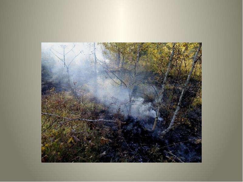 Экология в Кабанском районе Пгт Селенгинск, слайд 5