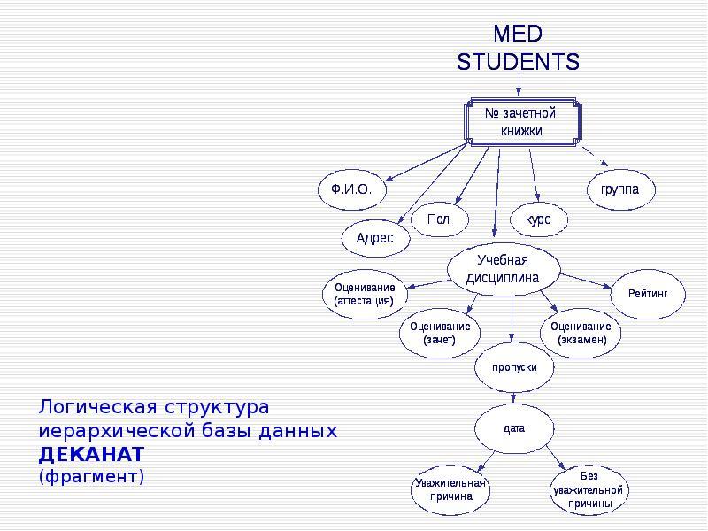 Логическая структура иерархической базы данных ДЕКАНАТ (фрагмент)