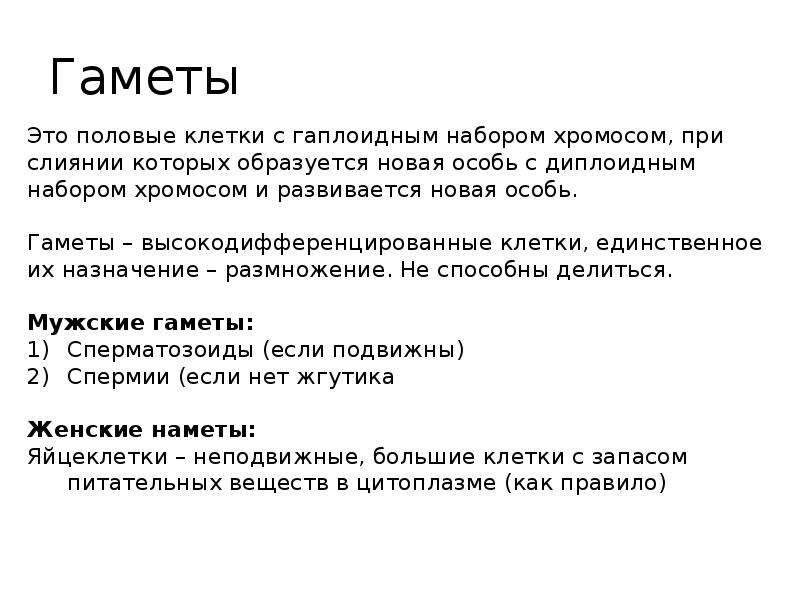 Гаметы