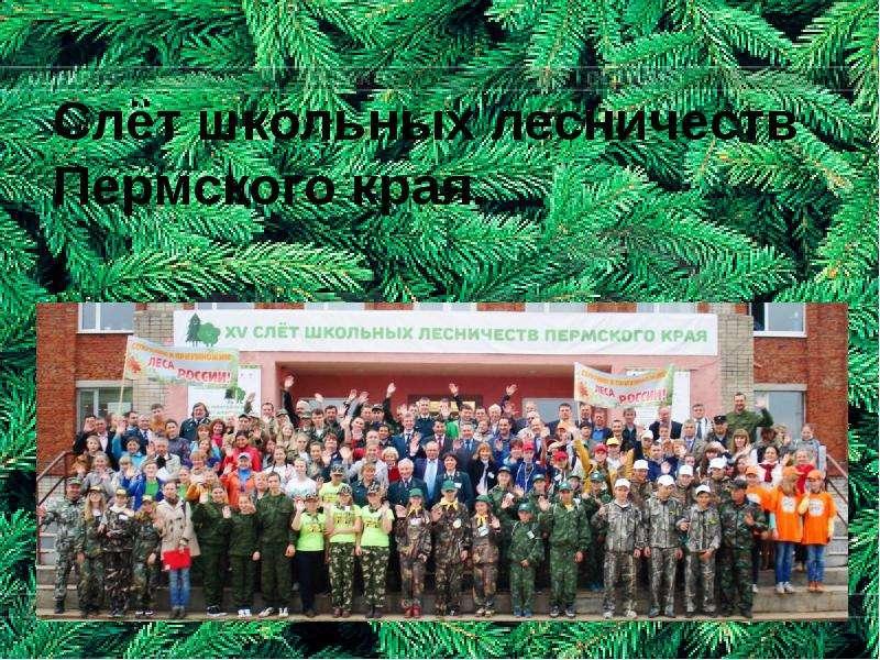 Слёт школьных лесничеств Пермского края.
