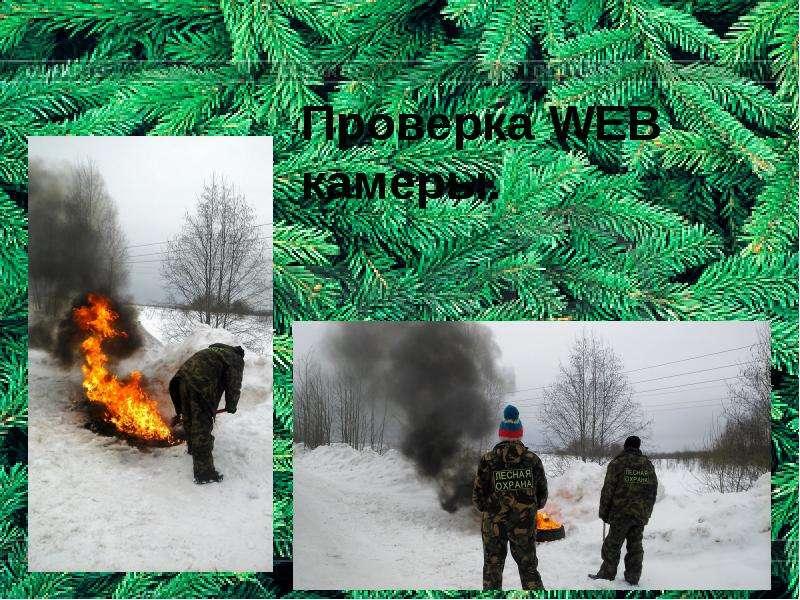 Проверка WEB камеры.