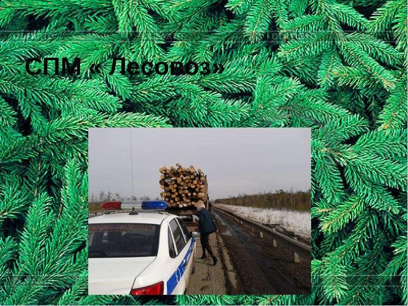 СПМ « Лесовоз»
