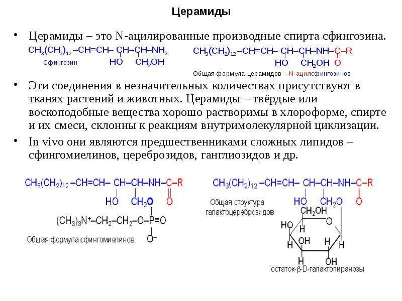 Церамиды Церамиды – это N-ацилированные производные спирта сфингозина. Эти соединения в незначительн
