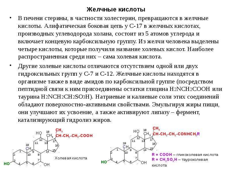 Желчные кислоты В печени стерины, в частности холестерин, превращаются в желчные кислоты. Алифатичес