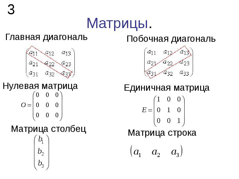 Матрицы.