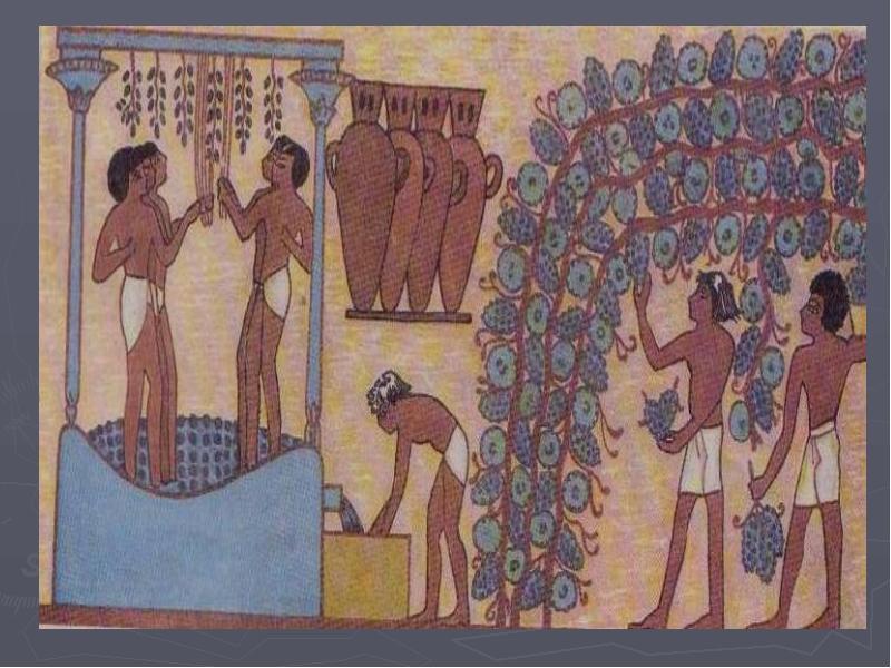 Украшения в жизни древних обществ, слайд 4