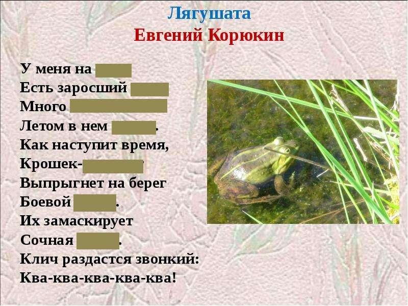 Лягушата Евгений Корюкин
