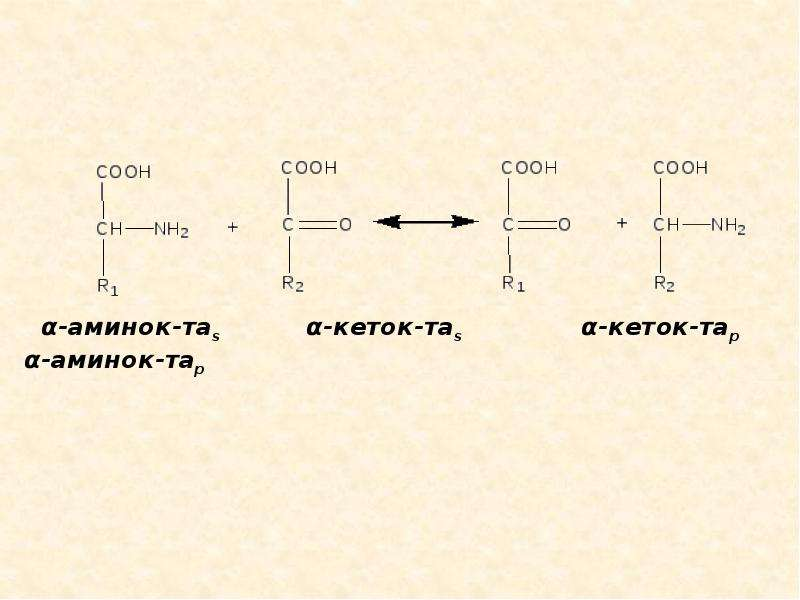 Метаболизм белков и аминокислот, слайд 9