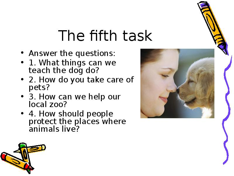 The fifth task Answer the questions: 1. What things can we teach the dog do? 2. How do you take care