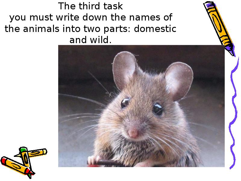 The third task you must write down the names of the animals into two parts: domestic and wild.
