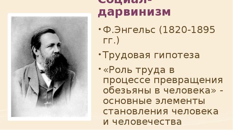 Социал-дарвинизм Ф. Энгельс (1820-1895 гг. ) Трудовая гипотеза «Роль труда в процессе превращения об