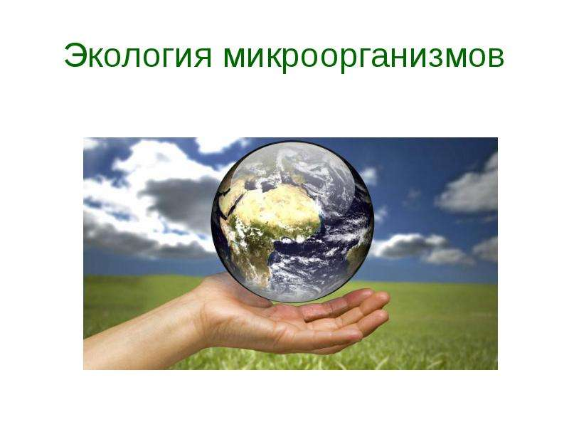 Презентация Экология микроорганизмов. Влияние факторов окружающей среды на микроорганизмы