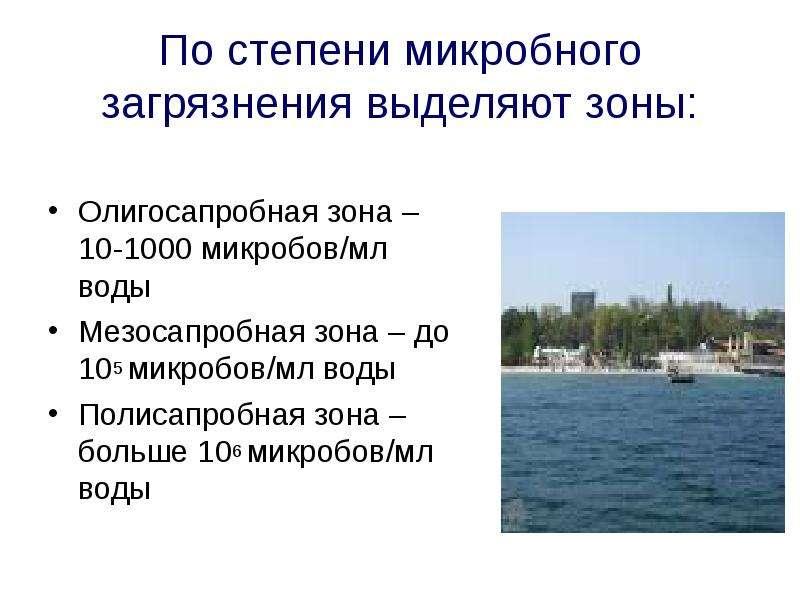 По степени микробного загрязнения выделяют зоны: Олигосапробная зона – 10-1000 микробов/мл воды Мезо
