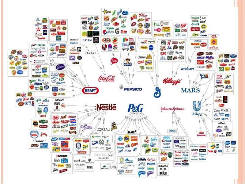 Транснациональные корпорации в мировой экономике, слайд 15