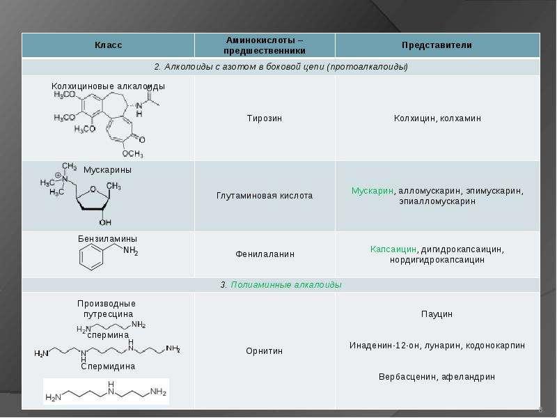 Алкалоиды. Выделение и очистка алкалоидов, слайд 8