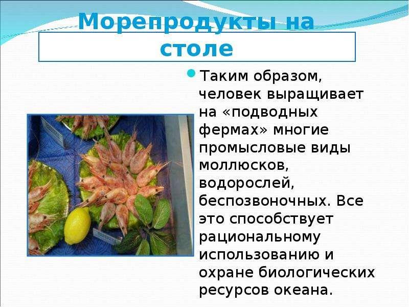 Морепродукты на столе Таким образом, человек выращивает на «подводных фермах» многие промысловые вид