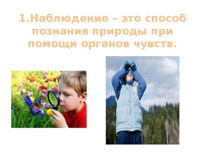 1. Наблюдение – это способ познания природы при помощи органов чувств.
