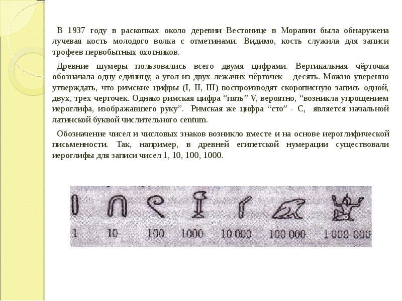 В 1937 году в раскопках около деревни Вестонице в Моравии была обнаружена лучевая кость молодого вол