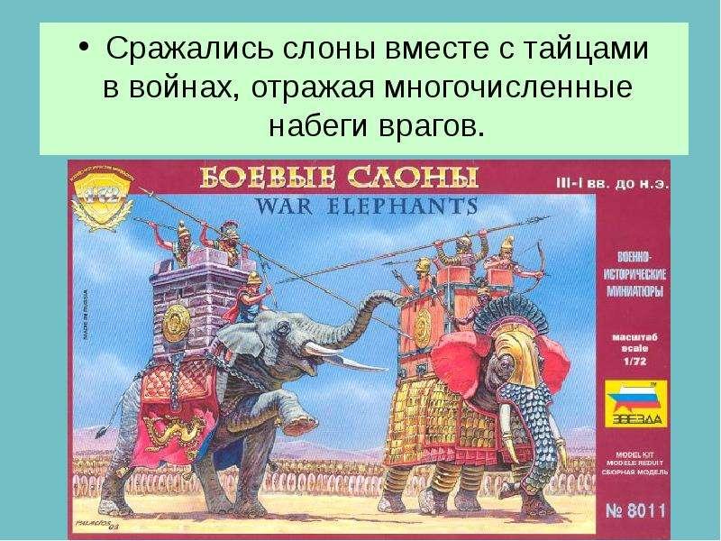 Сражались слоны вместе с тайцами Сражались слоны вместе с тайцами в войнах, отражая многочисленные н