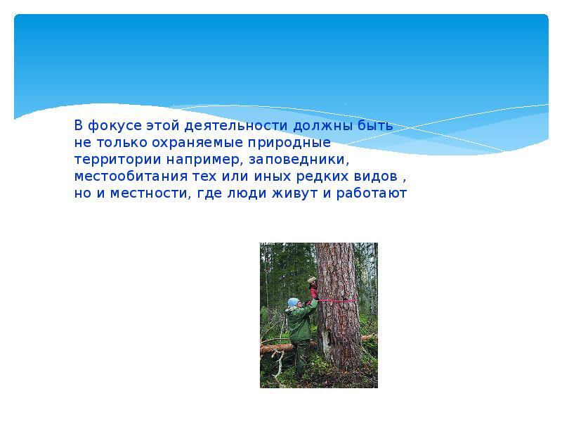 Пути и методы сохранения биоразнообразия в Нижегородской области, слайд 9