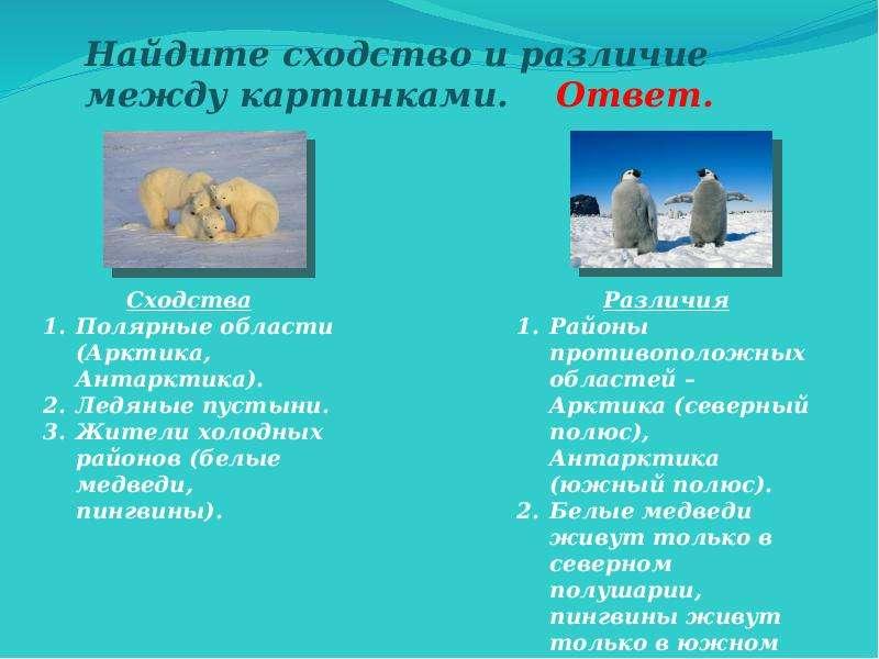 Использование упражнений по развитию мышления на уроках географии, слайд 12
