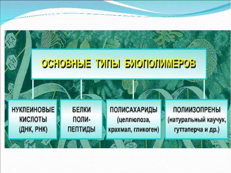 Природные полимеры и продукты их химических превращений, слайд 2