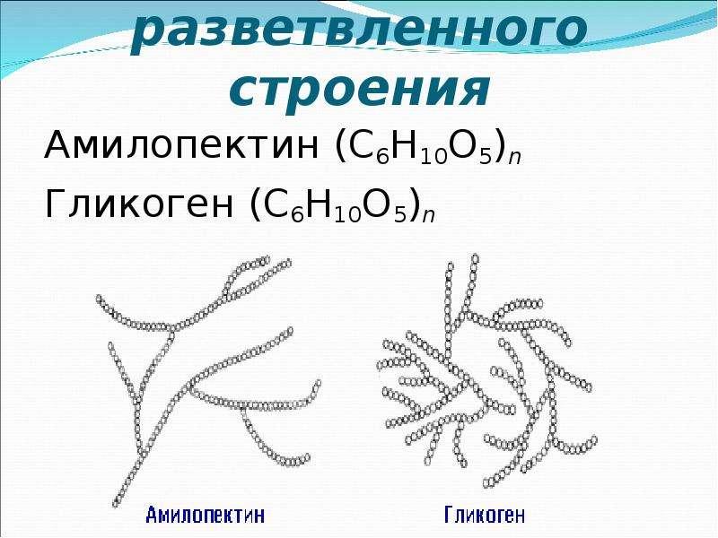 Полисахариды разветвленного строения Амилопектин (C6H10O5)n Гликоген (C6H10O5)n