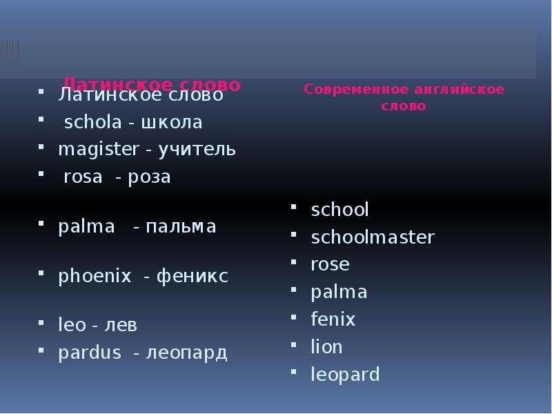 Латинское слово