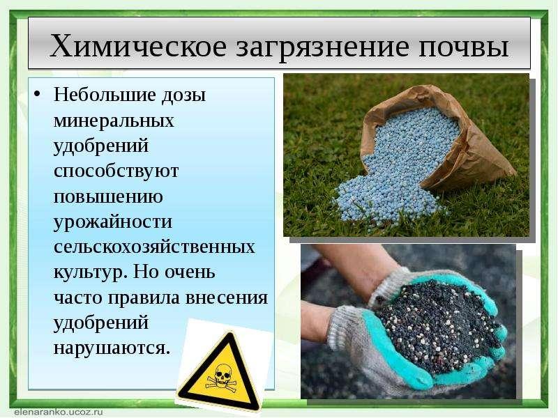 Химическое загрязнение почвы Небольшие дозы минеральных удобрений способствуют повышению урожайности