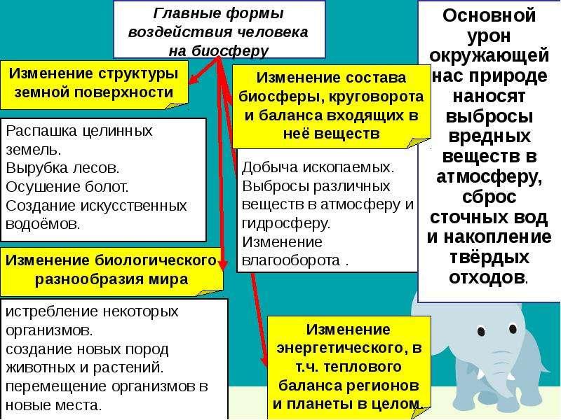 Основы рационального природопользования, слайд 16