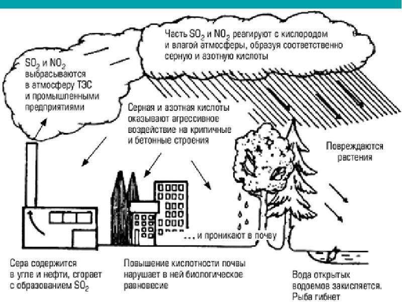 Основы рационального природопользования, слайд 26