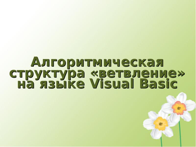 Алгоритмическая структура ветвление на языке Visual Basic