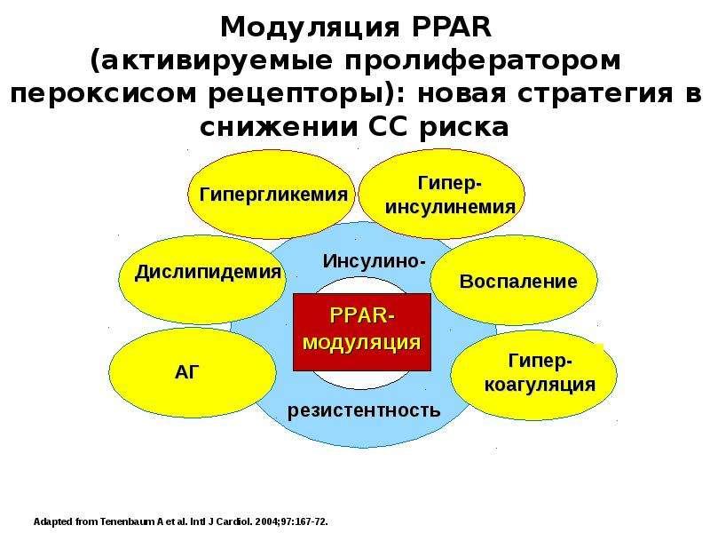 Препараты при начальной стадии гипертонии - О вашем сердце