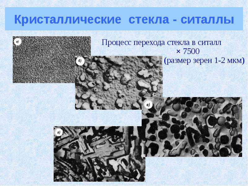 Кристаллические стекла - ситаллы Процесс перехода стекла в ситалл × 7500 (размер зерен 1-2 мкм)