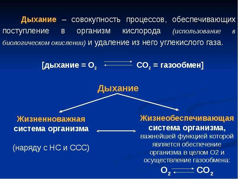 Фармакология системы дыхания (лекарственные средства, регулирующие функцию органов дыхания), слайд 2