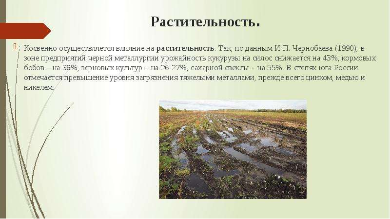 Растительность. Косвенно осуществляется влияние на растительность. Так, по данным И. П. Чернобаева (