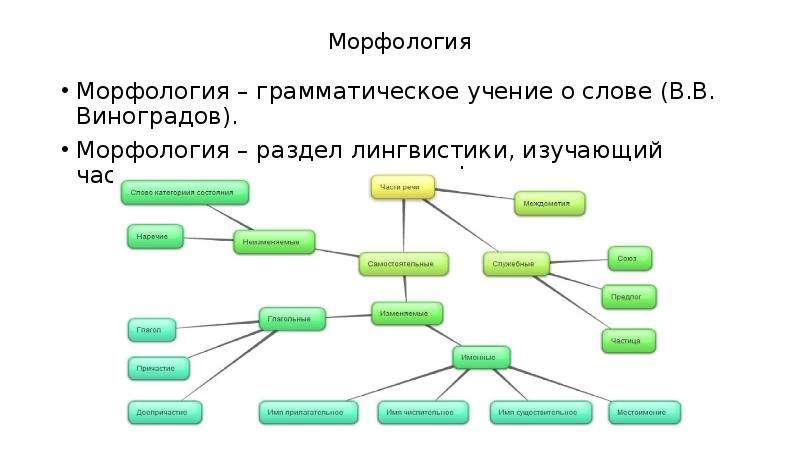 Морфология Морфология – грамматическое учение о слове (В. В. Виноградов). Морфология – раздел лингви