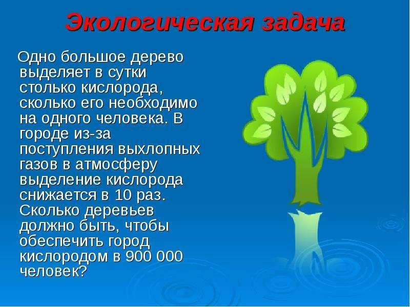 Экологическая задача Одно большое дерево выделяет в сутки столько кислорода, сколько его необходимо