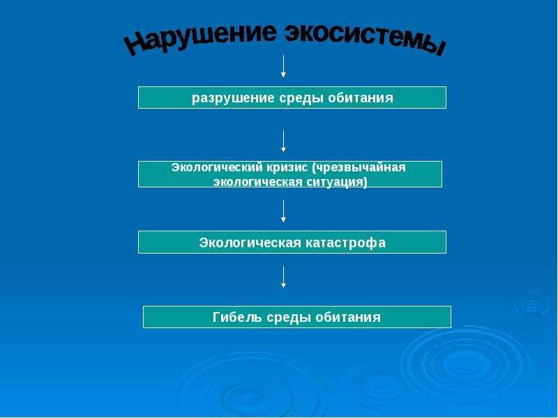 Нарушение экологического равновесия в местах проживания и его влияние на здоровье человека, слайд 9