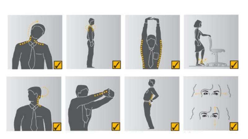 Физическая культура и спорт в режиме труда и отдыха, слайд 31