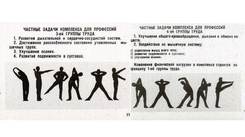 Физическая культура и спорт в режиме труда и отдыха, слайд 33