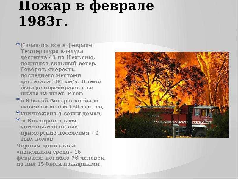 Пожар в феврале 1983г. Началось все в феврале. Температура воздуха достигла 43 по Цельсию, поднялся